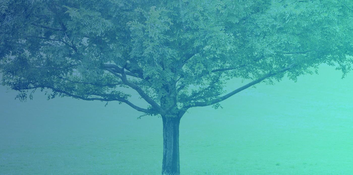 持続可能な社会の実現に向けてイメージ