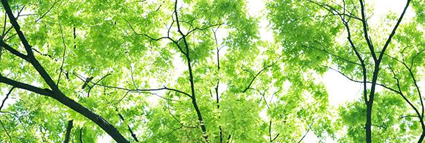 環境関連法令情報イメージ